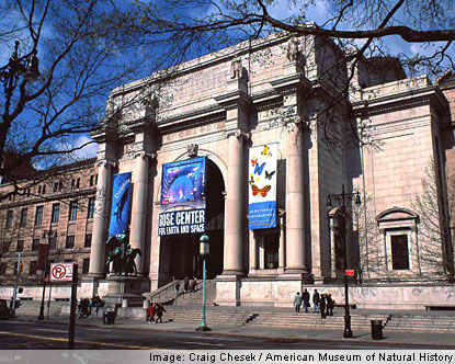 Cost Imax National Museum Of Natural History