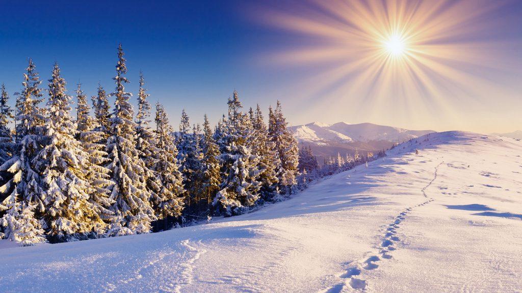 winter-sun-1